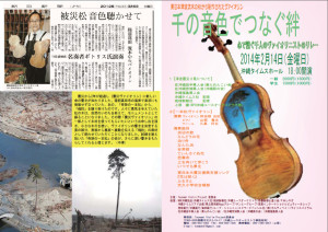 violin01
